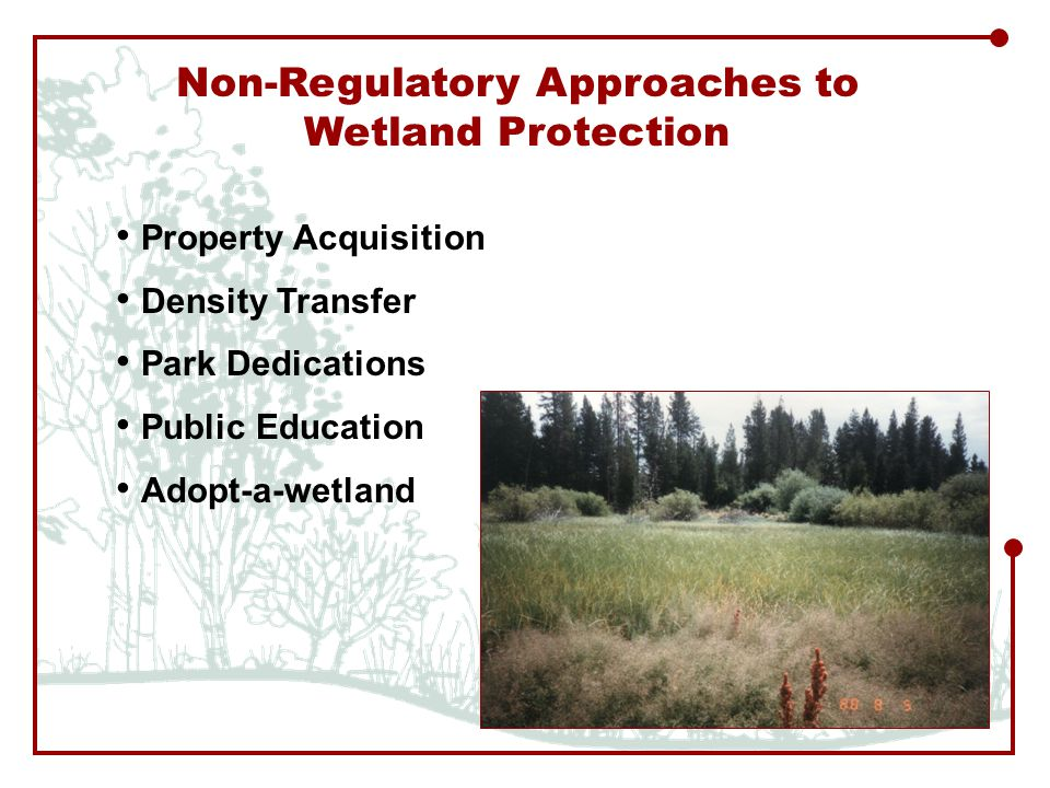 Property Acquisition Density Transfer Park Dedications Public Education Adopt-a-wetland Non-Regulatory Approaches to Wetland Protection