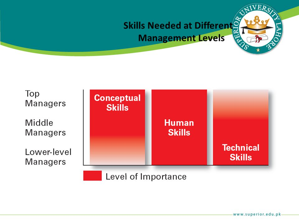 Skills Needed at Different Management Levels