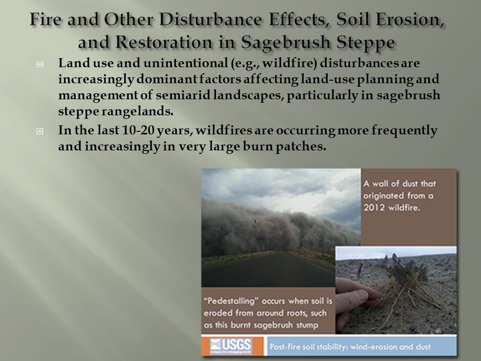 Land use and unintentional (e.g., wildfire) disturbances are increasingly dominant factors affecting land-use planning and management of semiarid landscapes, particularly in sagebrush steppe rangelands.