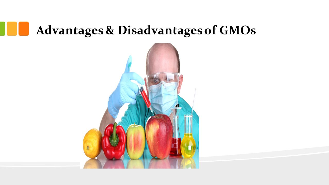 advantages and disadvantages of genetically modified What are the advantages and disadvantages of gmo gmo stands for genetically modified gmo advantages always include its role in boosting health and.
