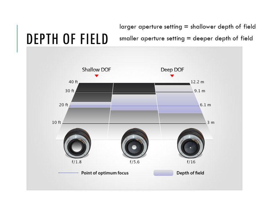 DEPTH OF FIELD larger aperture setting = shallower depth of field smaller aperture setting = deeper depth of field