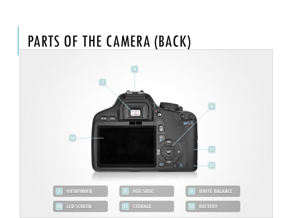 PARTS OF THE CAMERA (BACK)