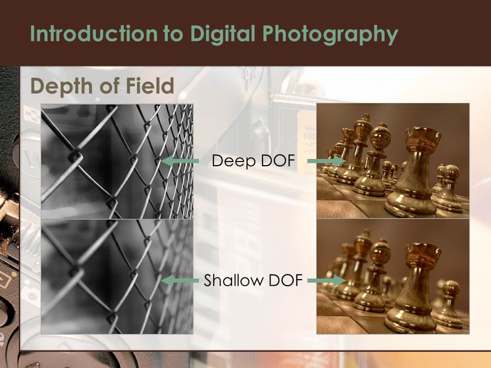 Introduction to Digital Photography Depth of Field Deep DOF Shallow DOF