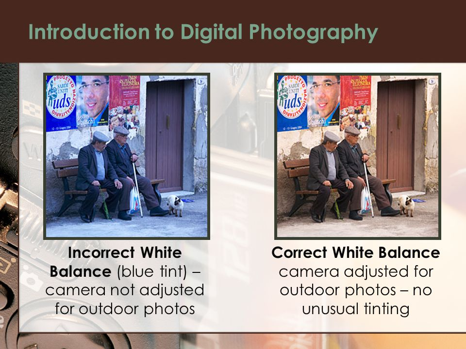 Introduction to Digital Photography Incorrect White Balance (blue tint) – camera not adjusted for outdoor photos Correct White Balance camera adjusted for outdoor photos – no unusual tinting