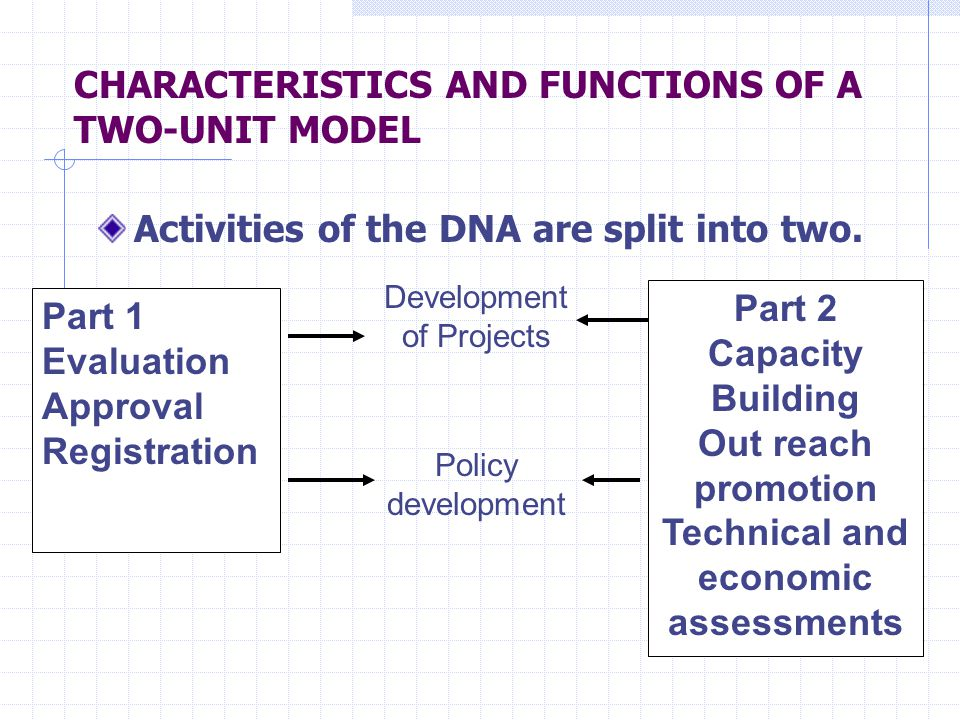 CHARACTERISTICS AND FUNCTIONS OF A TWO-UNIT MODEL Activities of the DNA are split into two.