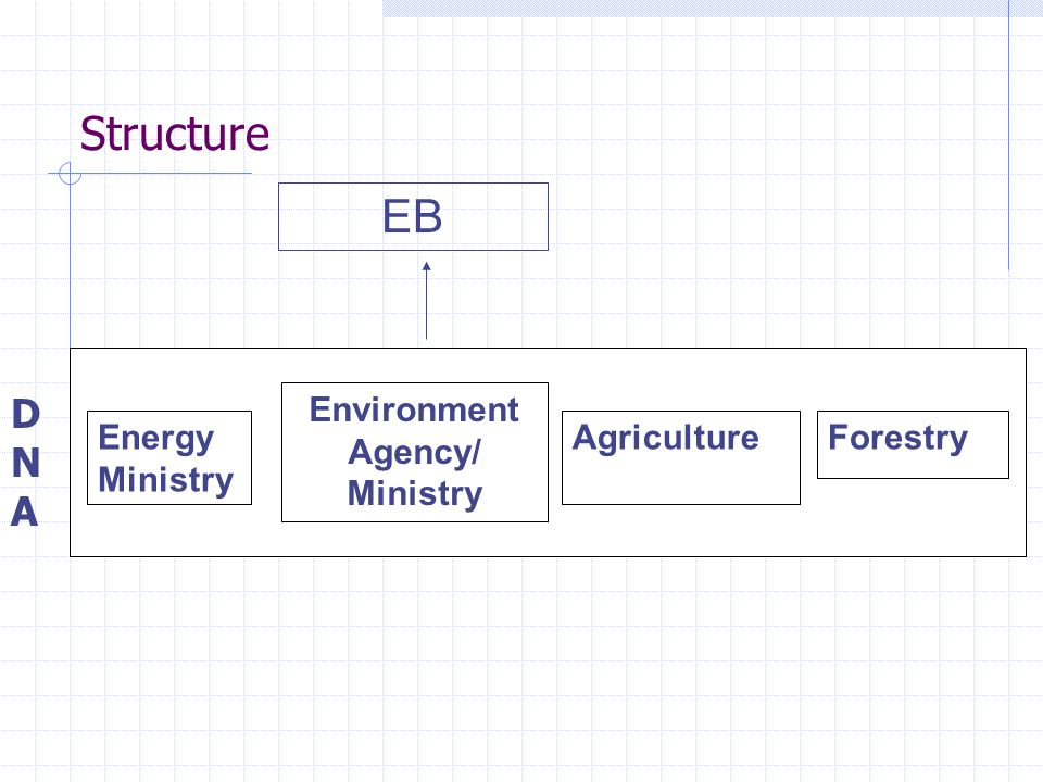 Structure Energy Ministry Environment Agency/ Ministry AgricultureForestry EB DNADNA