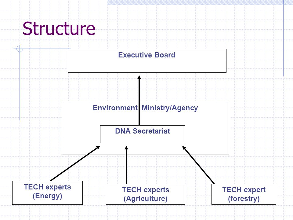 Structure Executive Board Environment Ministry/Agency DNA Secretariat TECH experts (Energy) TECH experts (Agriculture) TECH expert (forestry)