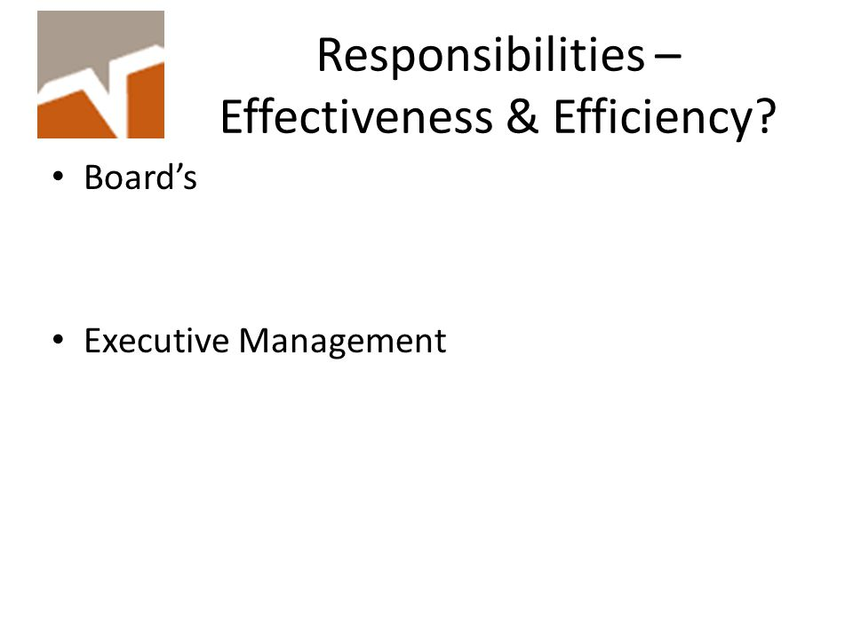 Responsibilities – Effectiveness & Efficiency Board's Executive Management