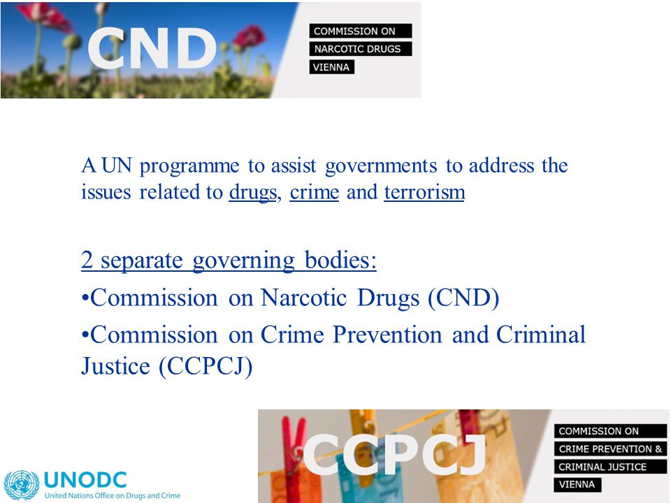 A UN programme to assist governments to address the issues related to drugs, crime and terrorism 2 separate governing bodies: Commission on Narcotic Drugs (CND) Commission on Crime Prevention and Criminal Justice (CCPCJ)