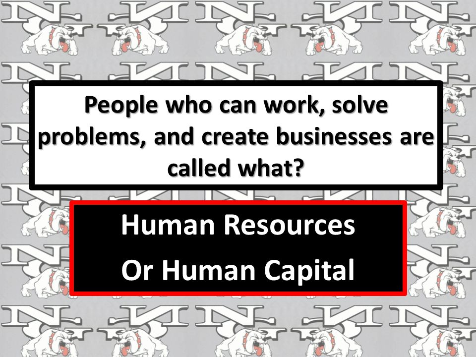 People who can work, solve problems, and create businesses are called what.