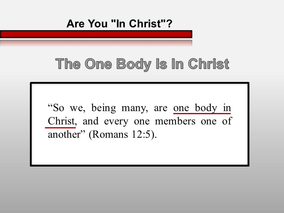 So we, being many, are one body in Christ, and every one members one of another (Romans 12:5).