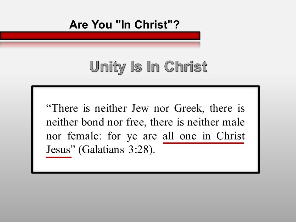 There is neither Jew nor Greek, there is neither bond nor free, there is neither male nor female: for ye are all one in Christ Jesus (Galatians 3:28).