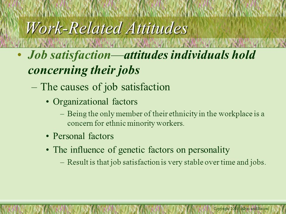 Copyright 2006, Allyn and Bacon Work-Related Attitudes Job satisfaction—attitudes individuals hold concerning their jobs –The causes of job satisfaction Organizational factors –Being the only member of their ethnicity in the workplace is a concern for ethnic minority workers.