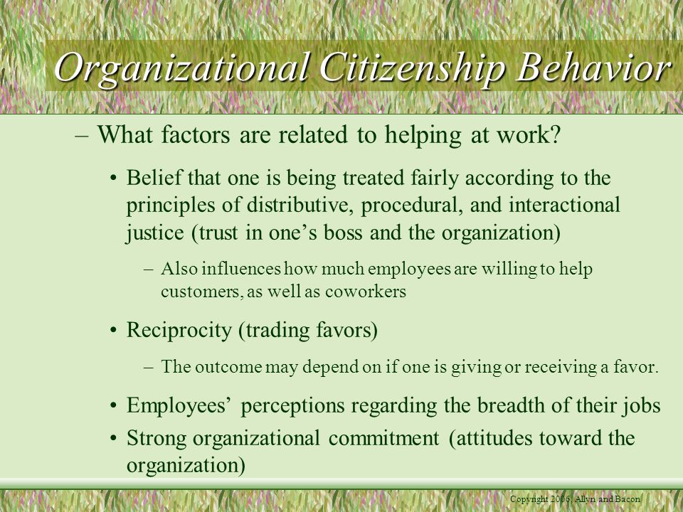 Copyright 2006, Allyn and Bacon Organizational Citizenship Behavior –What factors are related to helping at work.