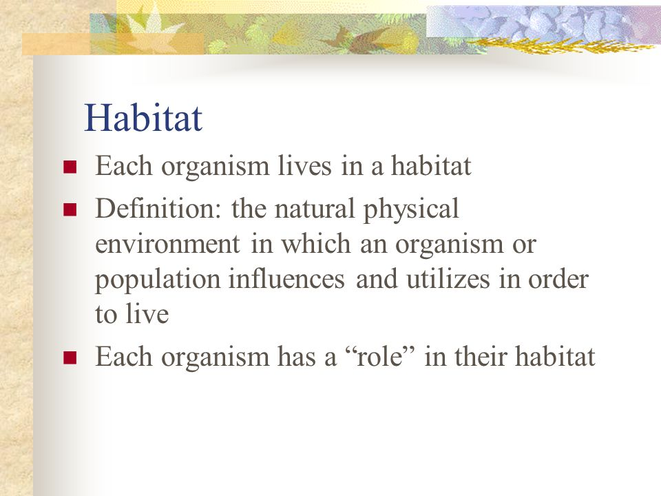 Habitat Each organism lives in a habitat Definition: the natural physical environment in which an organism or population influences and utilizes in order to live Each organism has a role in their habitat