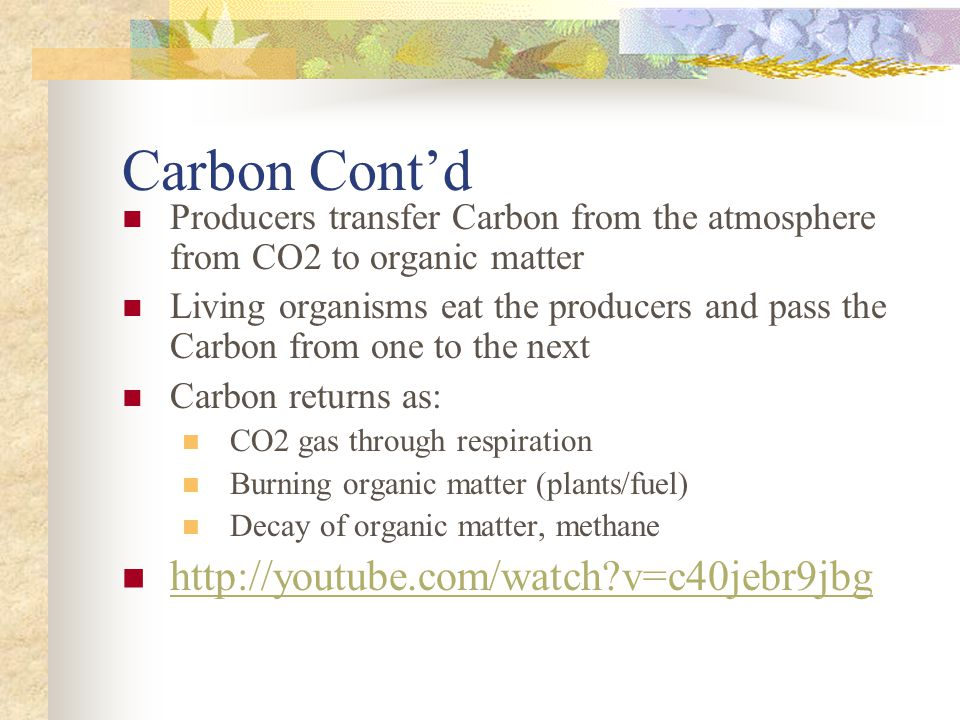 Carbon Cont'd Producers transfer Carbon from the atmosphere from CO2 to organic matter Living organisms eat the producers and pass the Carbon from one to the next Carbon returns as: CO2 gas through respiration Burning organic matter (plants/fuel) Decay of organic matter, methane   v=c40jebr9jbg