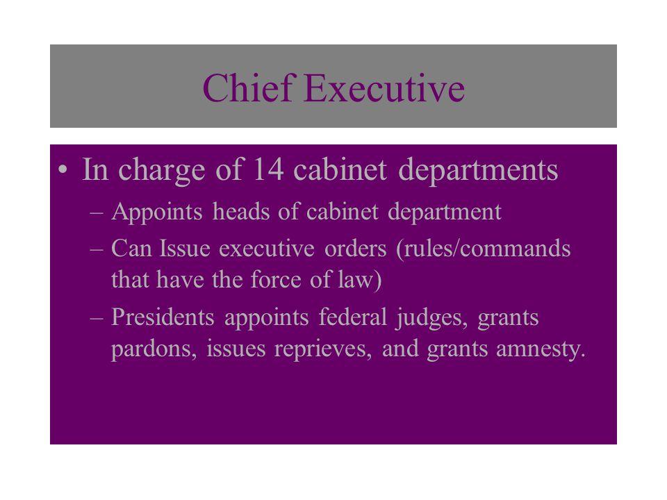 The Executive Branch PRESIDENT & VICE – PRESIDENT Top political ...