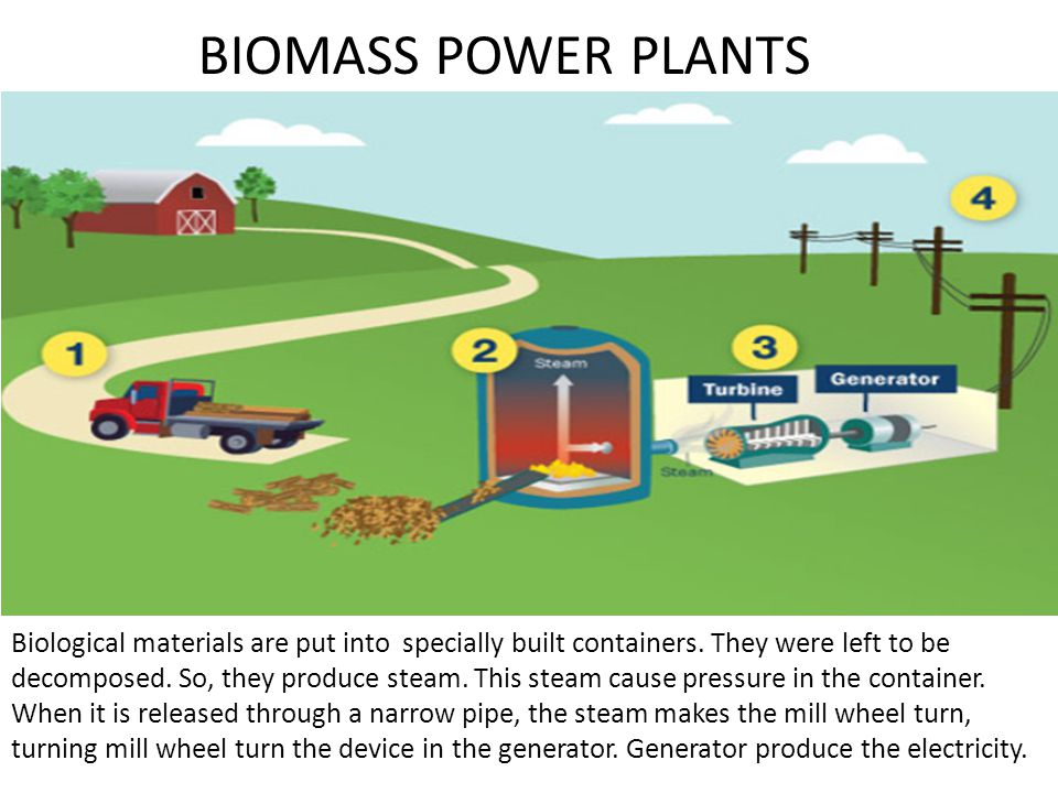 BIOMASS POWER PLANTS Biological materials are put into specially built containers.