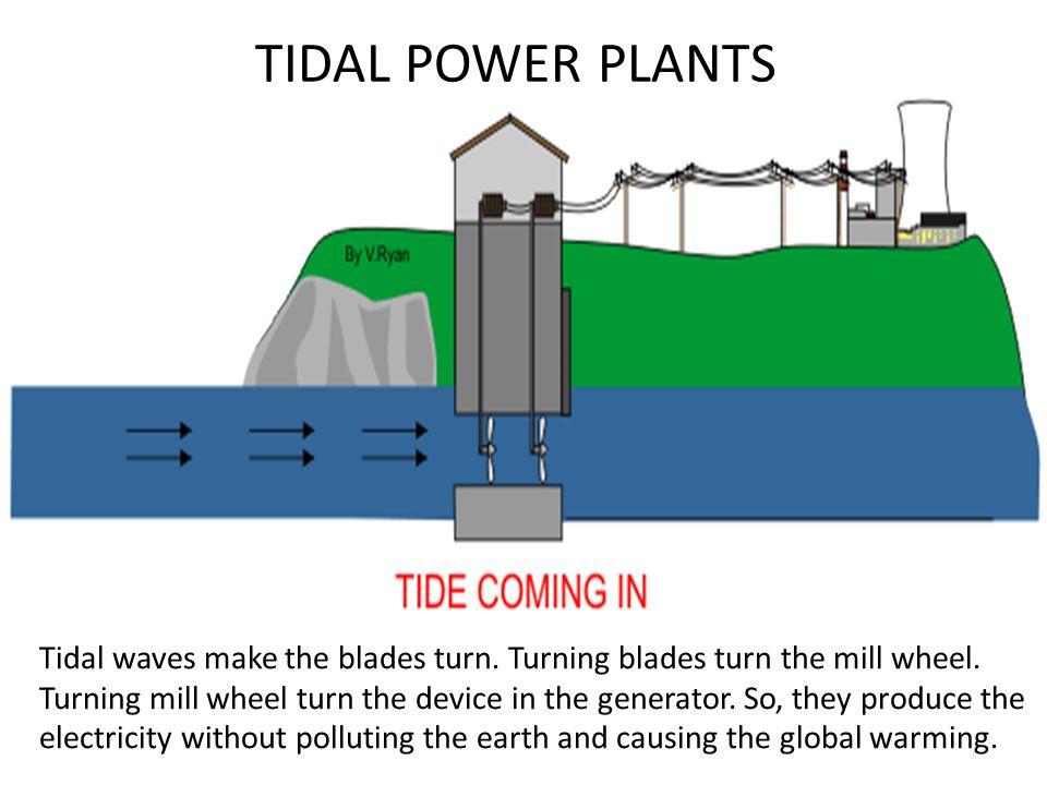 TIDAL POWER PLANTS Tidal waves make the blades turn.