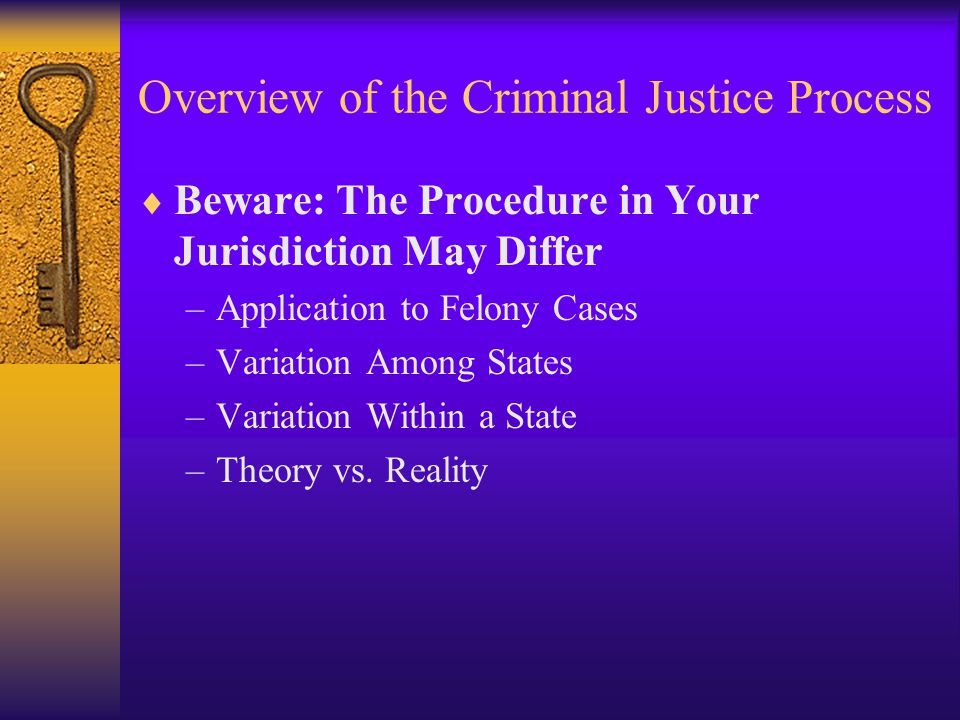 Overview of the Criminal Justice Process  Beware: The Procedure in Your Jurisdiction May Differ –Application to Felony Cases –Variation Among States –Variation Within a State –Theory vs.