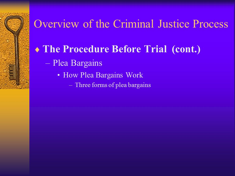 Overview of the Criminal Justice Process  The Procedure Before Trial (cont.) –Plea Bargains How Plea Bargains Work –Three forms of plea bargains