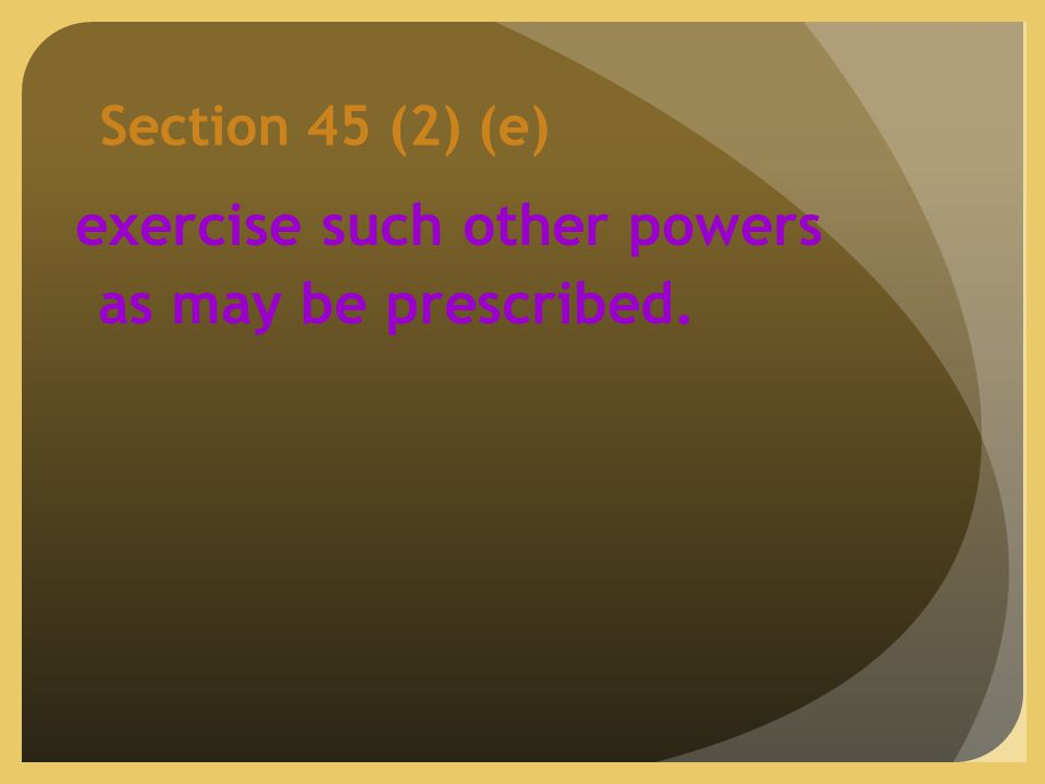 Section 45 (2) (e) exercise such other powers as may be prescribed.