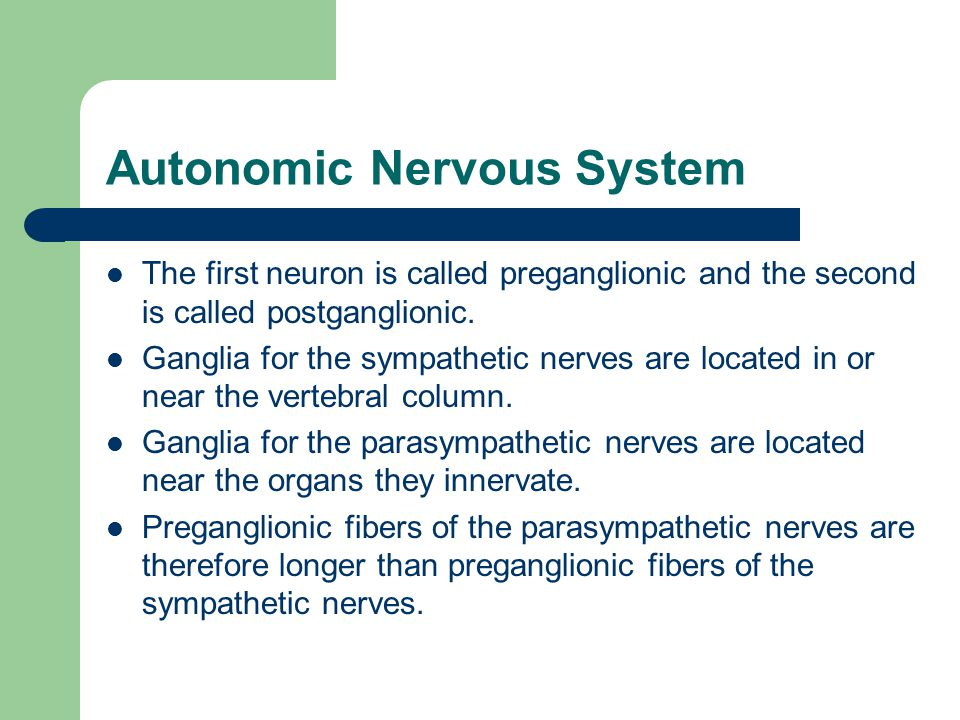 Autonomic Nervous System The first neuron is called preganglionic and the second is called postganglionic.