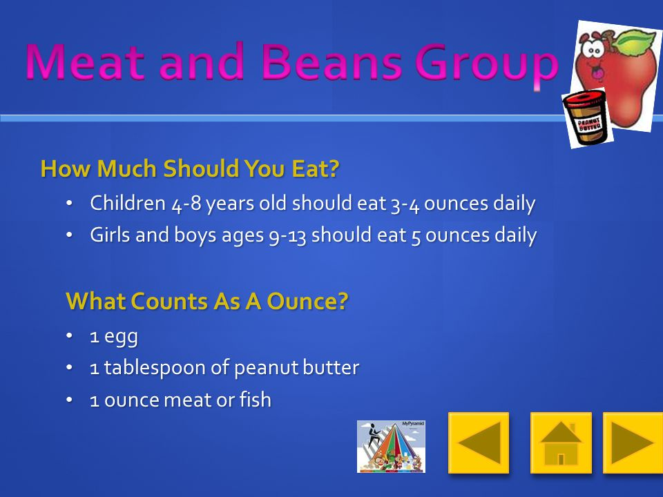 What Foods Make Up The Meat and Beans Group.