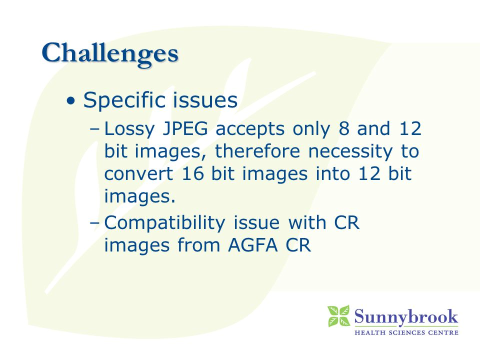Challenges Specific issues –Lossy JPEG accepts only 8 and 12 bit images, therefore necessity to convert 16 bit images into 12 bit images.