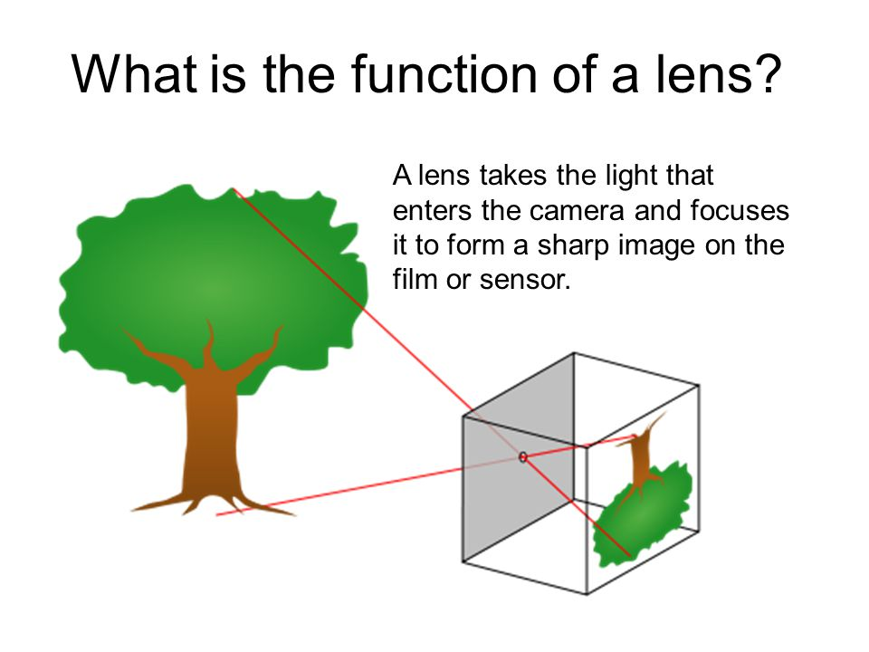 What is the function of a lens.