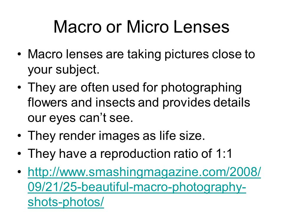 Macro or Micro Lenses Macro lenses are taking pictures close to your subject.