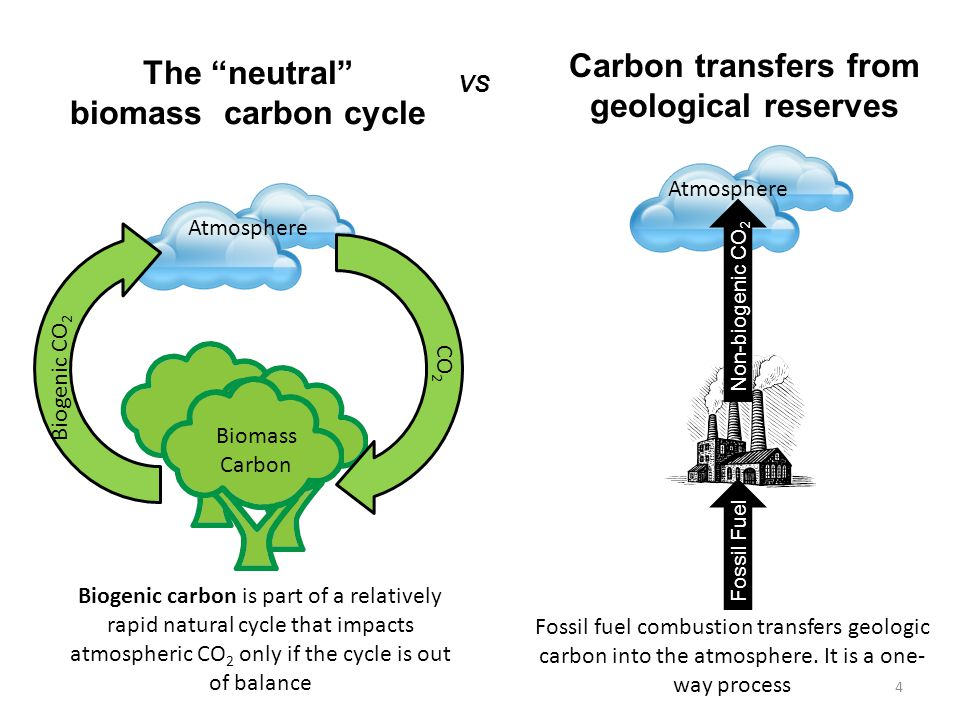 Atmosphere Biomass Carbon Biogenic CO 2 CO 2 Biogenic carbon is part of a relatively rapid natural cycle that impacts atmospheric CO 2 only if the cycle is out of balance Fossil Fuel Atmosphere Non-biogenic CO 2 Fossil fuel combustion transfers geologic carbon into the atmosphere.
