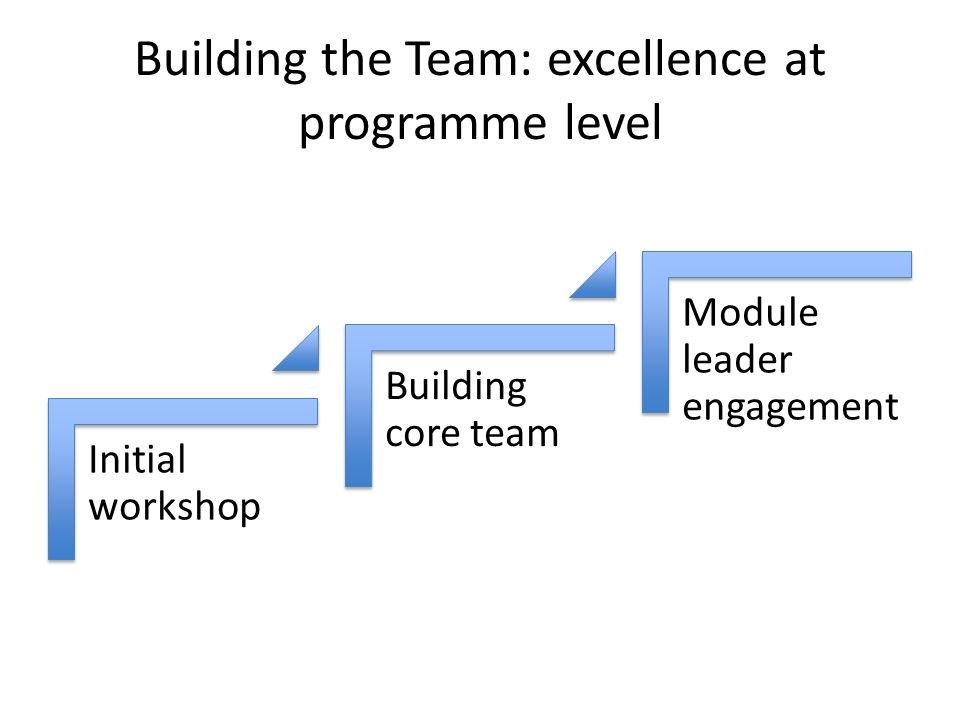 Building the Team: excellence at programme level Initial workshop Building core team Module leader engagement