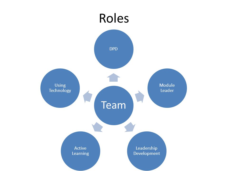 Roles Team DPD Module Leader Leadership Development Active Learning Using Technology