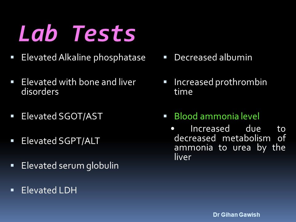 Lab Tests  Elevated Alkaline phosphatase  Elevated with bone and liver disorders  Elevated SGOT/AST  Elevated SGPT/ALT  Elevated serum globulin  Elevated LDH  Decreased albumin  Increased prothrombin time  Blood ammonia level Increased due to decreased metabolism of ammonia to urea by the liver Dr Gihan Gawish