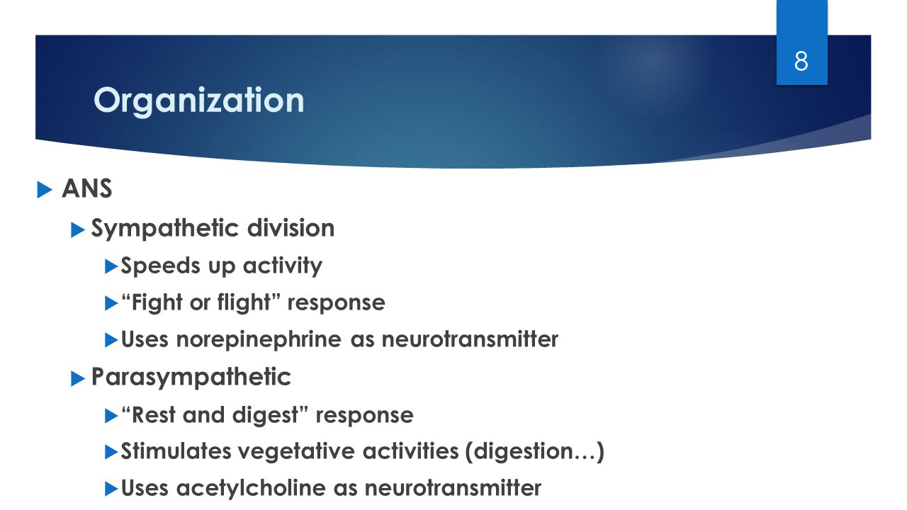 Organization 8  ANS  Sympathetic division  Speeds up activity  Fight or flight response  Uses norepinephrine as neurotransmitter  Parasympathetic  Rest and digest response  Stimulates vegetative activities (digestion…)  Uses acetylcholine as neurotransmitter