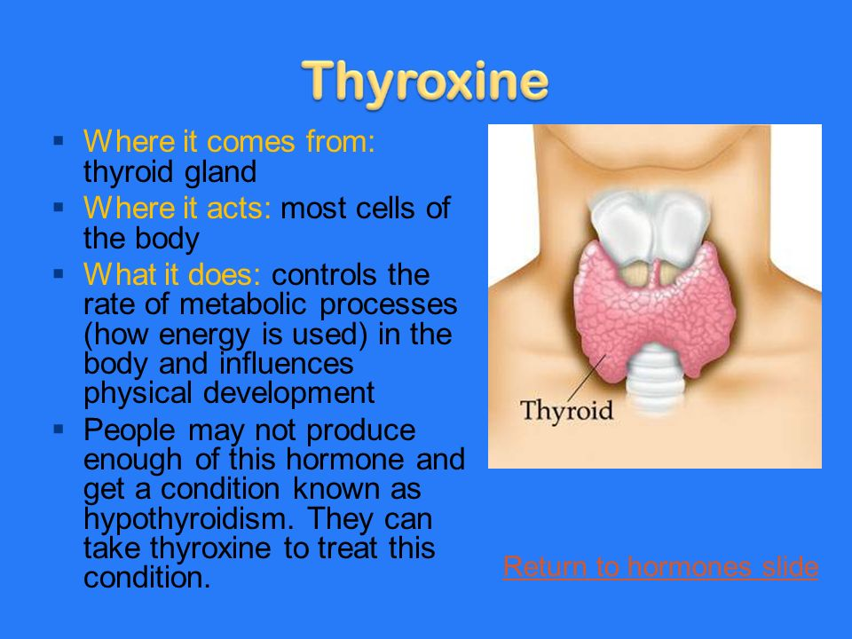  Where it comes from: thyroid gland  Where it acts: most cells of the body  What it does: controls the rate of metabolic processes (how energy is used) in the body and influences physical development  People may not produce enough of this hormone and get a condition known as hypothyroidism.