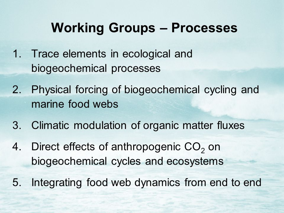 Working Groups – Processes 1.Trace elements in ecological and biogeochemical processes 2.Physical forcing of biogeochemical cycling and marine food webs 3.Climatic modulation of organic matter fluxes 4.Direct effects of anthropogenic CO 2 on biogeochemical cycles and ecosystems 5.Integrating food web dynamics from end to end