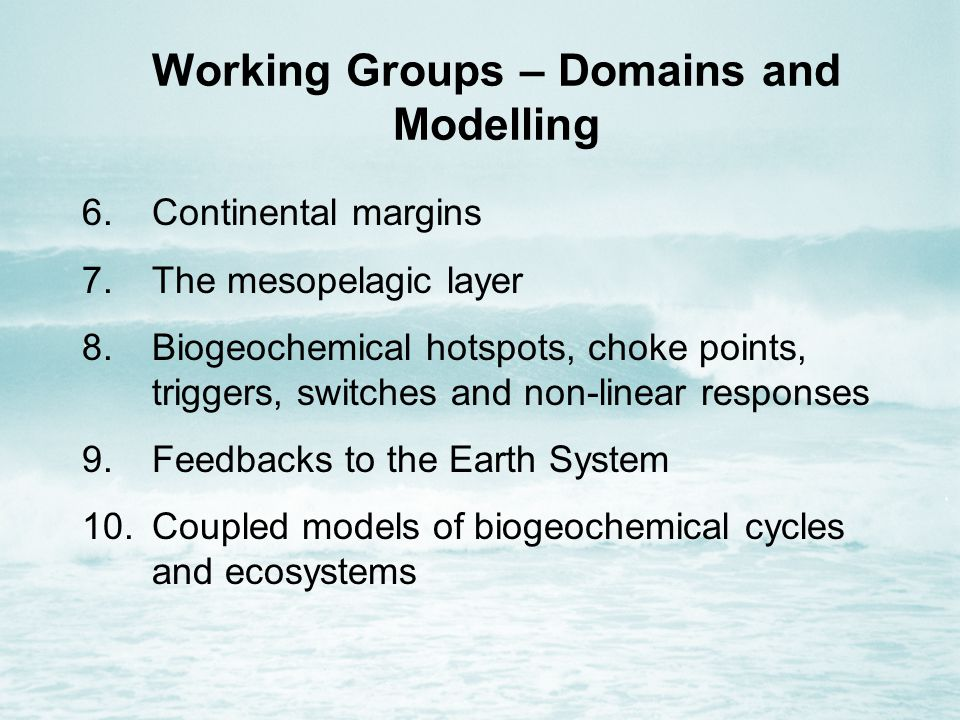 Working Groups – Domains and Modelling 6.Continental margins 7.The mesopelagic layer 8.Biogeochemical hotspots, choke points, triggers, switches and non-linear responses 9.Feedbacks to the Earth System 10.Coupled models of biogeochemical cycles and ecosystems