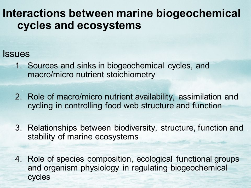 Interactions between marine biogeochemical cycles and ecosystems Issues 1.Sources and sinks in biogeochemical cycles, and macro/micro nutrient stoichiometry 2.Role of macro/micro nutrient availability, assimilation and cycling in controlling food web structure and function 3.Relationships between biodiversity, structure, function and stability of marine ecosystems 4.Role of species composition, ecological functional groups and organism physiology in regulating biogeochemical cycles