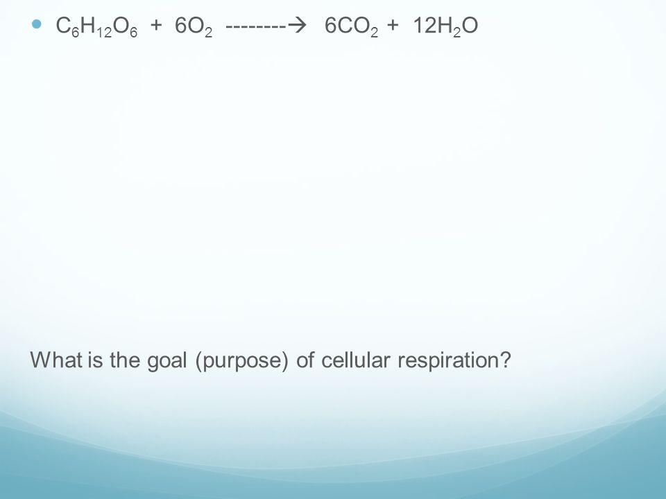 C 6 H 12 O 6 + 6O 2 --------  6CO 2 + 12H 2 O What is the goal (purpose) of cellular respiration