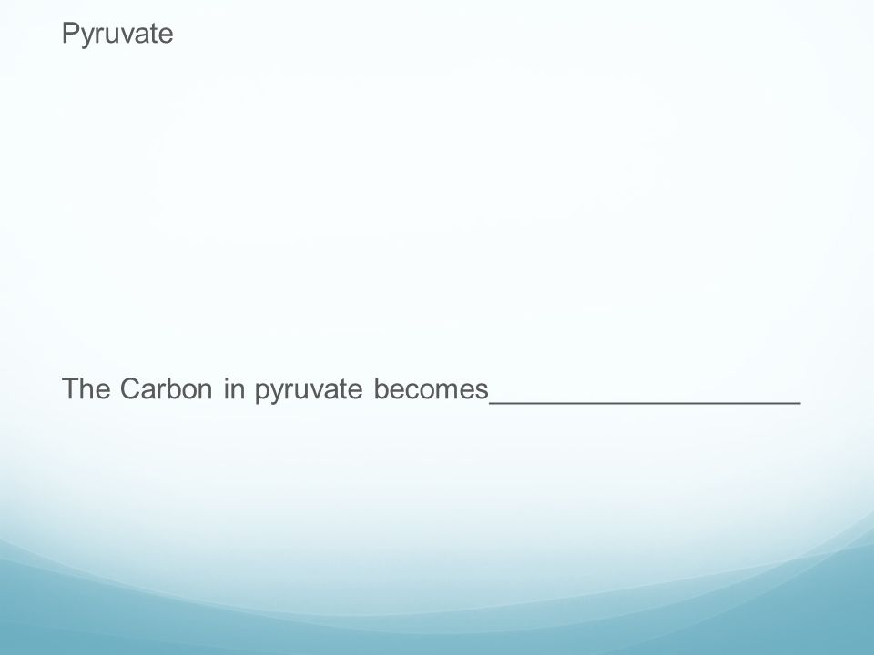 Pyruvate The Carbon in pyruvate becomes___________________