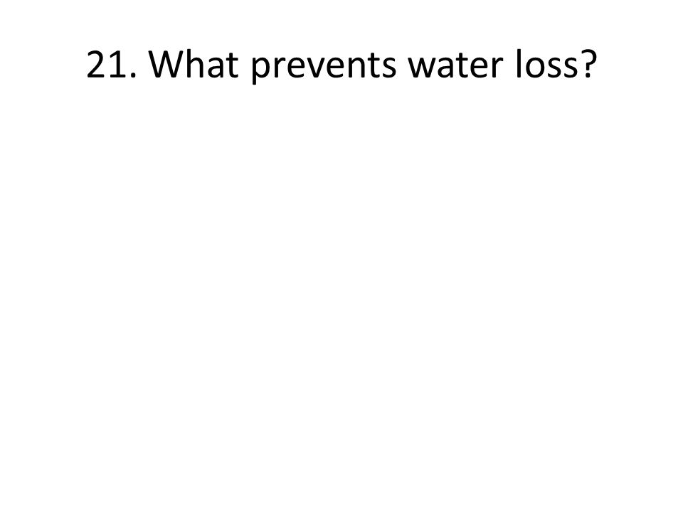 21. What prevents water loss