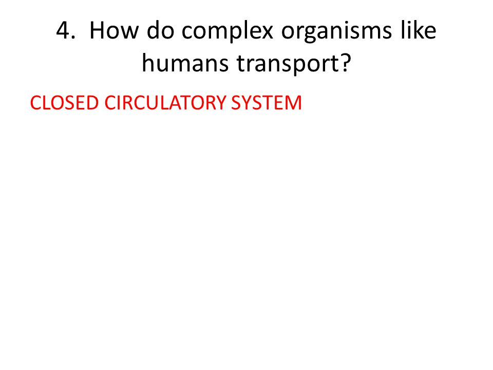 4. How do complex organisms like humans transport CLOSED CIRCULATORY SYSTEM