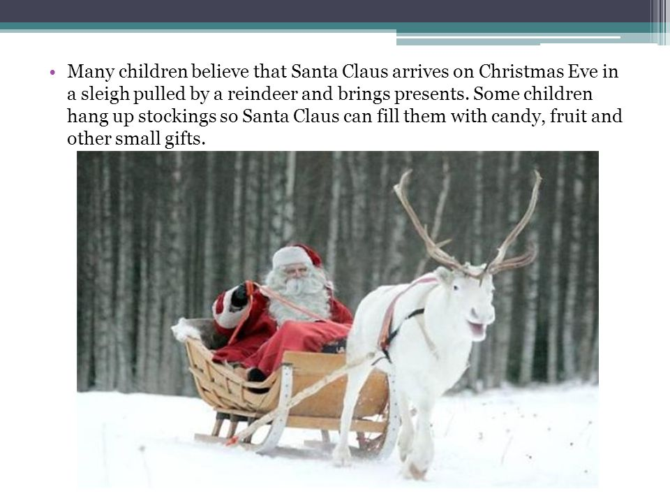 Many children believe that Santa Claus arrives on Christmas Eve in a sleigh pulled by a reindeer and brings presents.