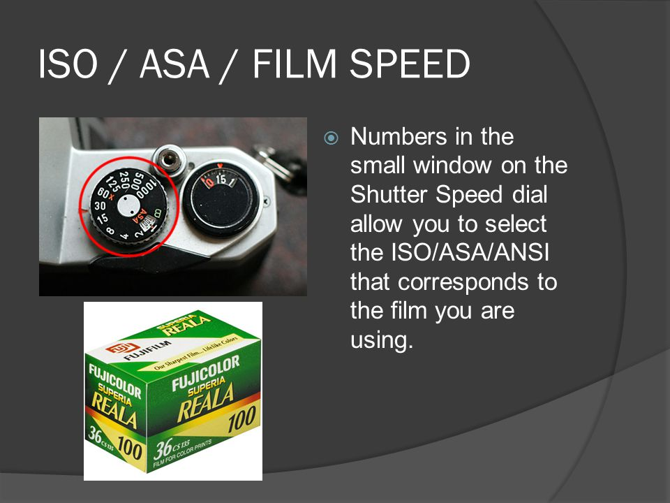 ISO / ASA / FILM SPEED  Numbers in the small window on the Shutter Speed dial allow you to select the ISO/ASA/ANSI that corresponds to the film you are using.