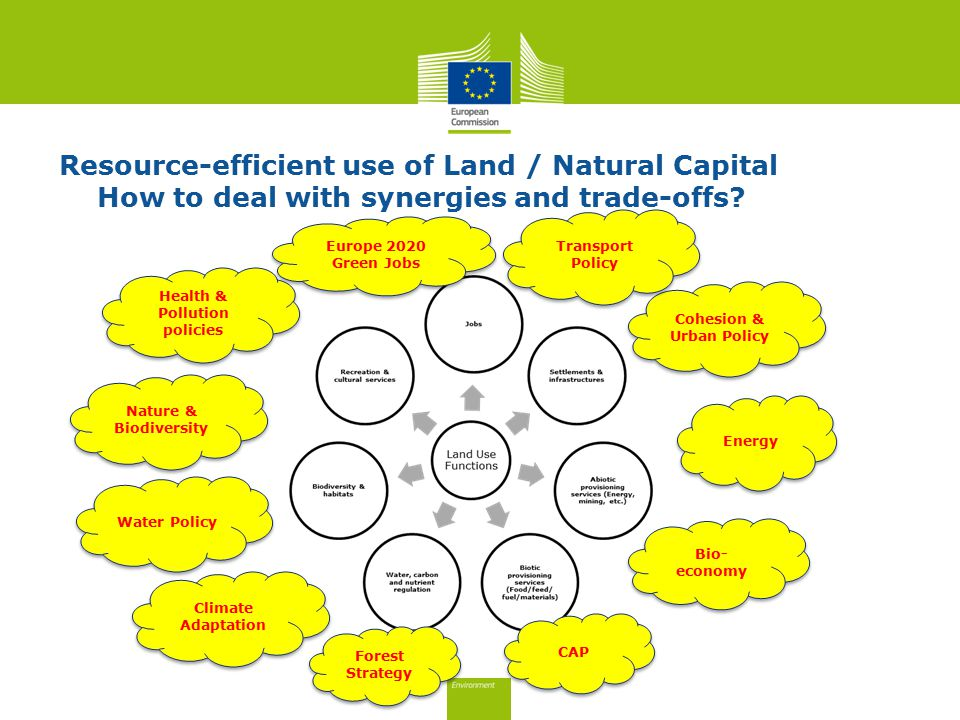 Resource-efficient use of Land / Natural Capital How to deal with synergies and trade-offs.