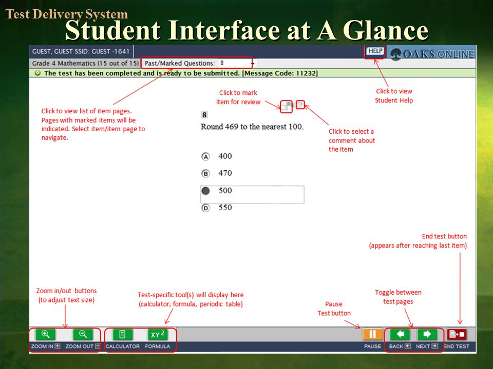 Student Interface at A Glance Test Delivery System