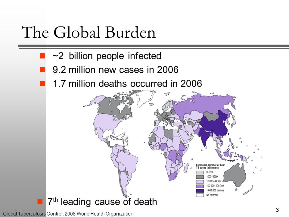 The Global Burden ~2 billion people infected 9.2 million new cases in 2006 1.7 million deaths occurred in 2006 7 th leading cause of death 3 Global Tuberculosis Control, 2008 World Health Organization