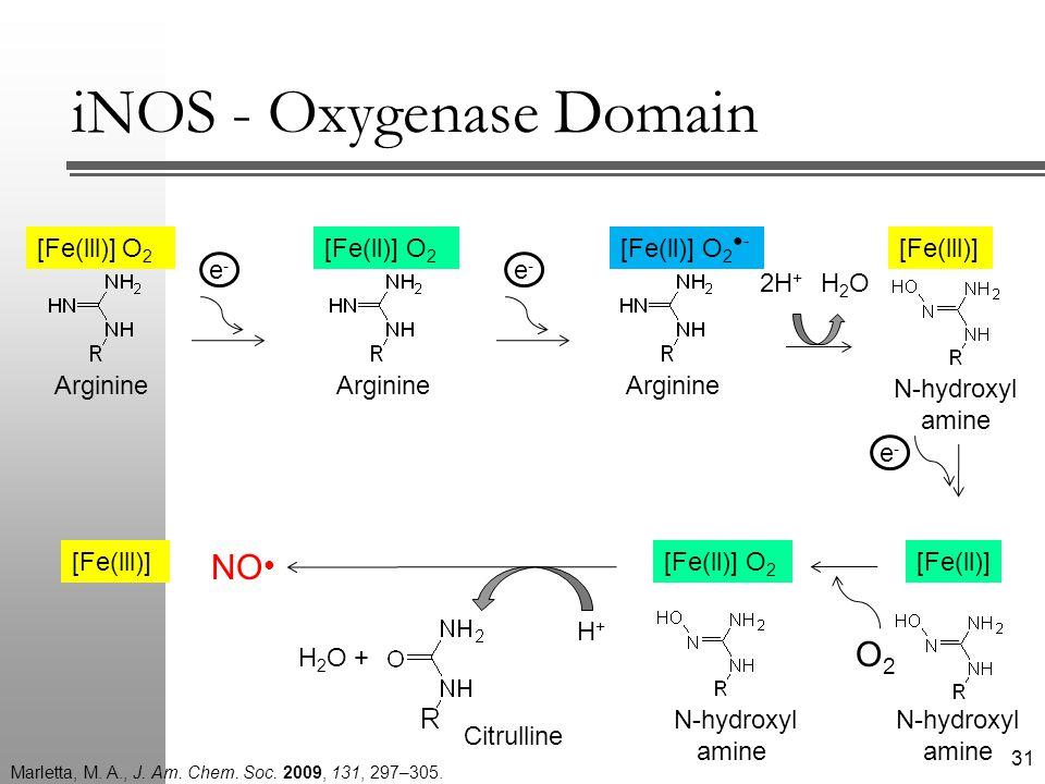 [Fe(ll)] e-e- [Fe(ll)] O 2 O2O2 H+H+ H 2 O + NO ● [Fe(lll)] iNOS - Oxygenase Domain N-hydroxyl amine 31 [Fe(lll)] O 2 Arginine e-e- [Fe(ll)] O 2 Arginine [Fe(ll)] O 2 ●- Arginine e-e- 2H + H2OH2O [Fe(lll)] N-hydroxyl amine Citrulline Marletta, M.